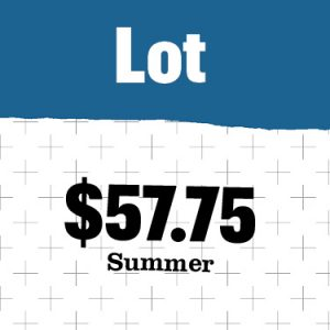 updated costs for summer 2022 for surface lots
